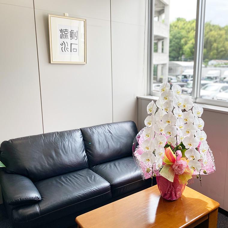 オフィス内の受付カウンターやデスクへ花鉢や観葉植物を提供します